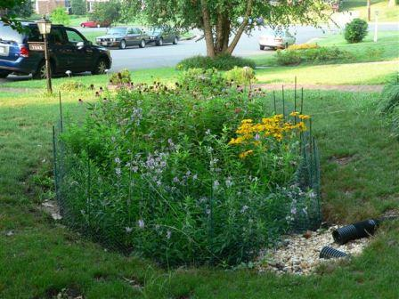 A rain garden is one example of a suitable outlet.