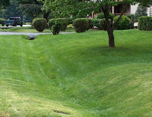 A mowed grass swale