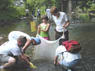group uses net to catch insects in stream