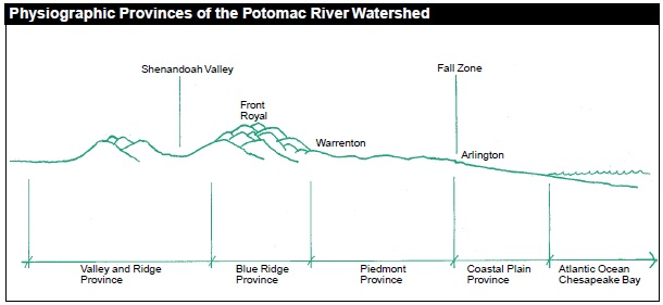 The Potomac River Watershed is made up of four physiographic provinces, spanning from the Valley and Ridge to the Piedmont and Coastal Plain. The shape of the land, the type of rock found within it and the type of soils associated with it are different for each province.