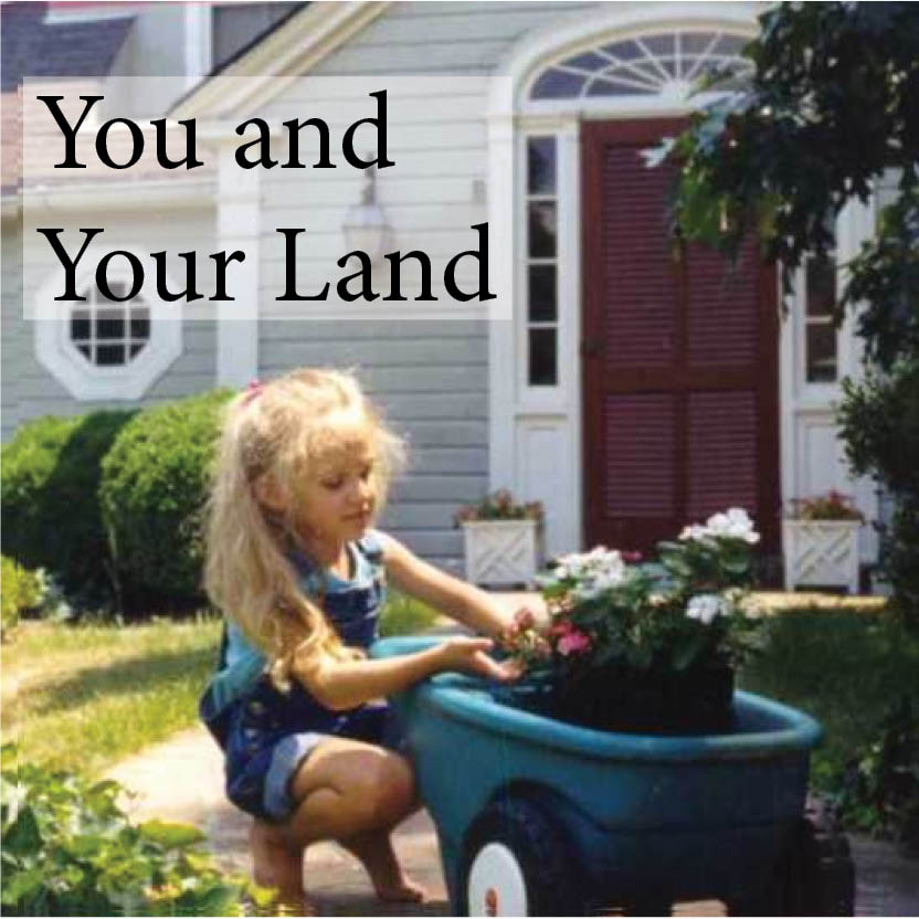 You and Your Land book cover