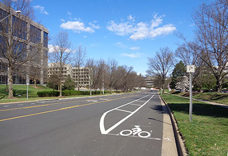 Westbranch Drive Buffered Bike Lane